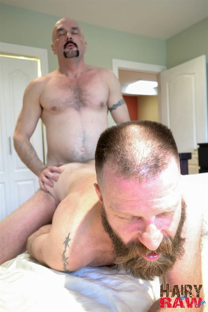 Hairy and Raw Troy Collins and CanaDad Masculine Hairy Daddies Fucking Bareback Amateur Gay Porn 13